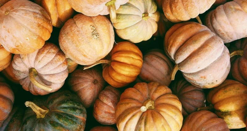 The-Best-2019-Fall-Events-in-Carmel-Indiana